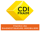 Diagnostic immobilier Saint-Avé